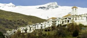 4 GRX MICE (6) Alpujarra